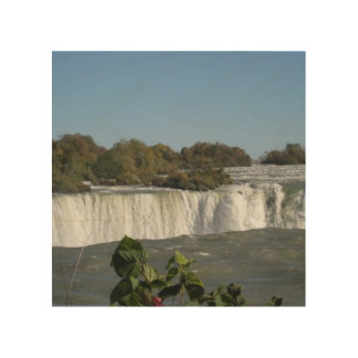 Niagara Falls Wood Canvases