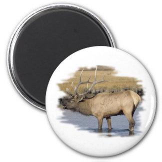 Nice Elk in the stream 6 Cm Round Magnet