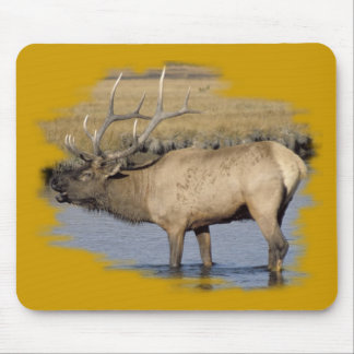 Nice Elk in the stream Mouse Pad