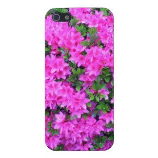 nice flower bro/girl iPhone 5 covers