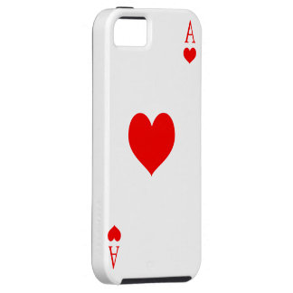 Nice iPhone 5s card marries iPhone 5 Cover