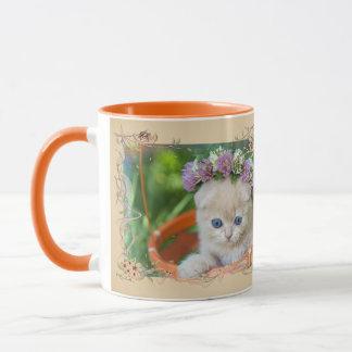 Nice kitten mug