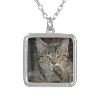 Nice Kitty Cat Thinking Square Pendant Necklace
