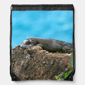 Nice Looking Iguana of St. Thomas U.S.V.I Backpack