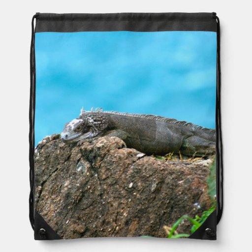 Nice Looking Iguana of St. Thomas U.S.V.I Drawstring Bag