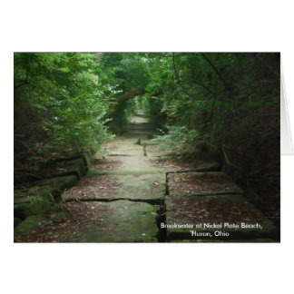 Nickel Plate Beach path, Huron, Ohio, notecards Note Card