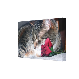 Nicky & A Rose Wrapped Canvas Canvas Print