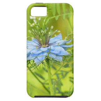 Nigelle, if beautiful! iPhone 5 case