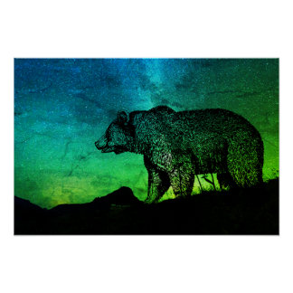 Night Bear And Aurora Borealis Poster