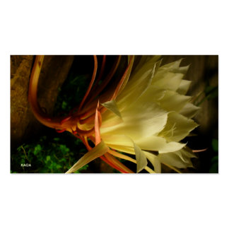 Night Bloom Pack Of Standard Business Cards