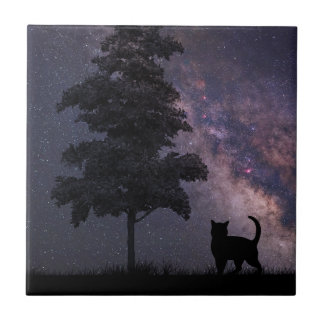 Night Cat Ceramic Tile