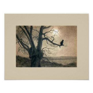 Night Cat in Tree Poster
