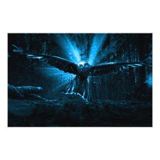 Night Eagle Flyer