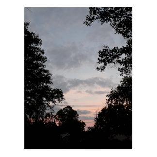 Night Falls Postcard