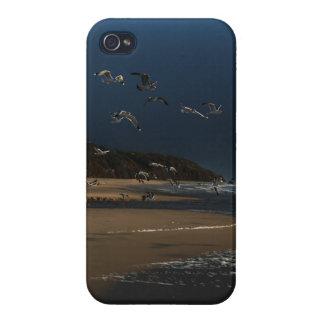 Night Gulls iPhone Skin iPhone 4/4S Cases