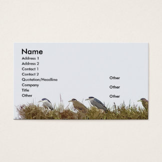 Night Heron Business Card