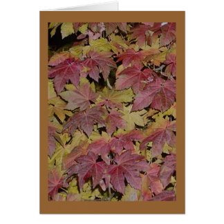Night Leaves Greeting Cards