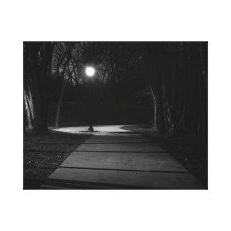 Night Light Stretched Canvas Print