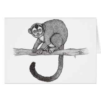 Night monkey (Aotus spec.) sketch by Nicole Janes Card