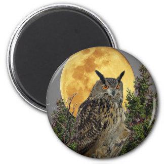 night owl full moon magnet