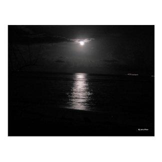 Night Sea Postcard