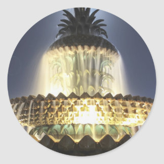 Night Time Pineapple Fountain Classic Round Sticker