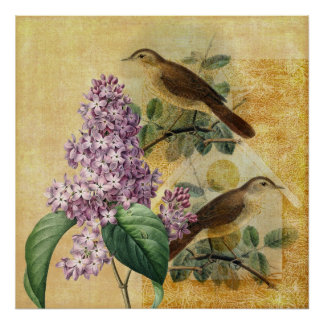 Nightingales with Lilac Poster
