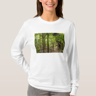 Nikau Palms, Heaphy Track, near Karamea, T-Shirt