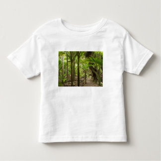 Nikau Palms, Heaphy Track, near Karamea, Toddler T-Shirt