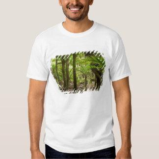 Nikau Palms, Heaphy Track, near Karamea, Tshirt