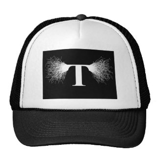 Nikola Tesla - Tesla Coil - Lightning Hat