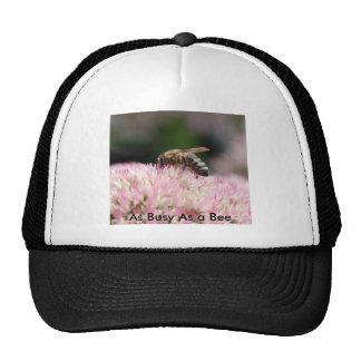Nikon11 009, As Busy As a Bee Mesh Hats