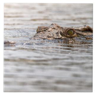 Nile Crocodile Large Square Tile