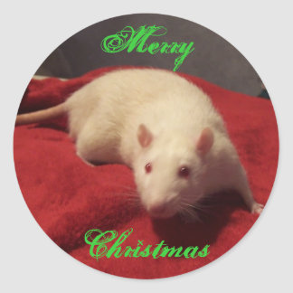 Niles - Christmas Sticker