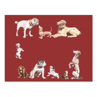 Nine Dogs Postcard