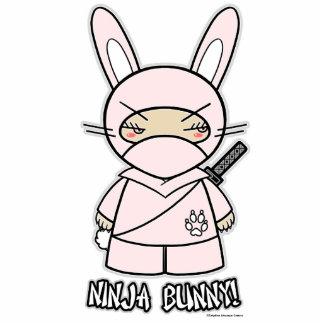 Ninja Bunny! Photo Sculpture