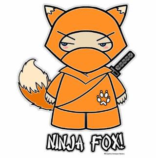 Ninja Fox! Photo Sculpture