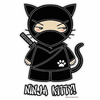 Ninja Kitty! Photo Sculpture
