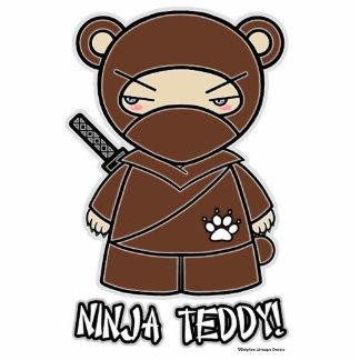 Ninja Teddy! Photo Sculpture