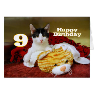 Ninth Birthday Kitten with Toy Tiger Greeting Cards