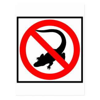 No Alligators Highway Sign Post Card