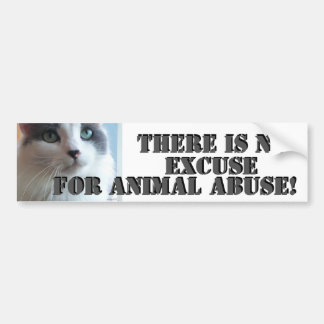 No Animal Abuse Sad Kitty Bumper Sticker