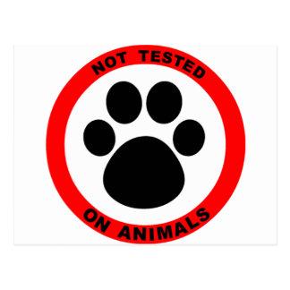 No Animal Testing Symbol Postcard