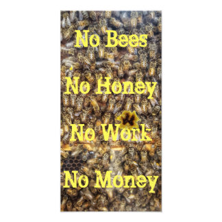 """No Bees, No Honey"" Quote Print Photographic Print"