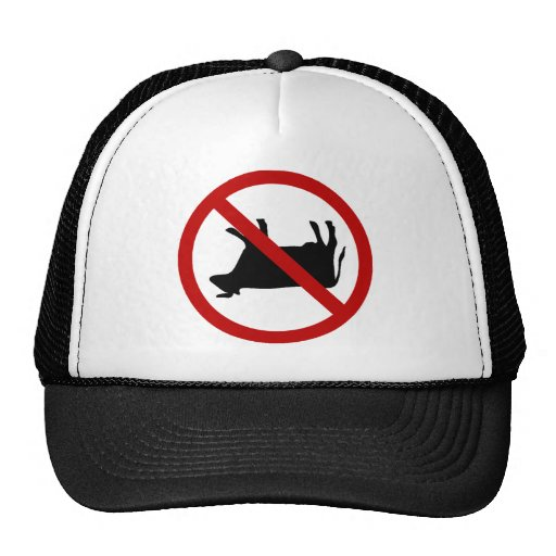 NO Cow Tipping! Trucker Hats