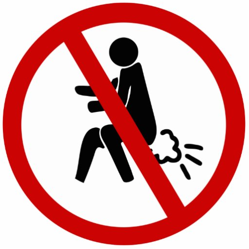 NO Farting ⚠ Funny Thai Toilet Sign ⚠ Acrylic Cut Outs