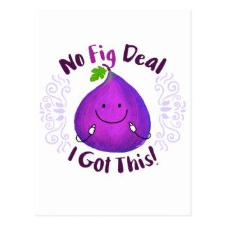 No Fig Deal I got this - Punny Garden Postcard