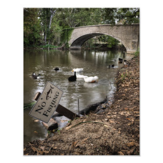 No Fishing in Audubon Park Photo Print
