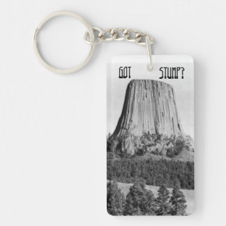 No Forests on Flat Earth Got Stump? Keychain Ring