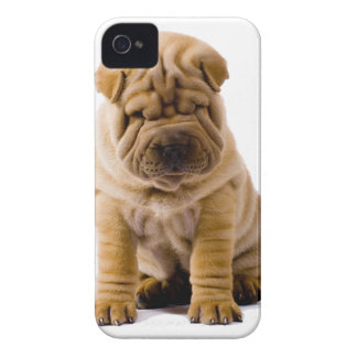 No frowns today! Case-Mate iPhone 4 case